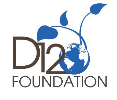 D12 Foundation