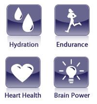 Chia seed benefits icons
